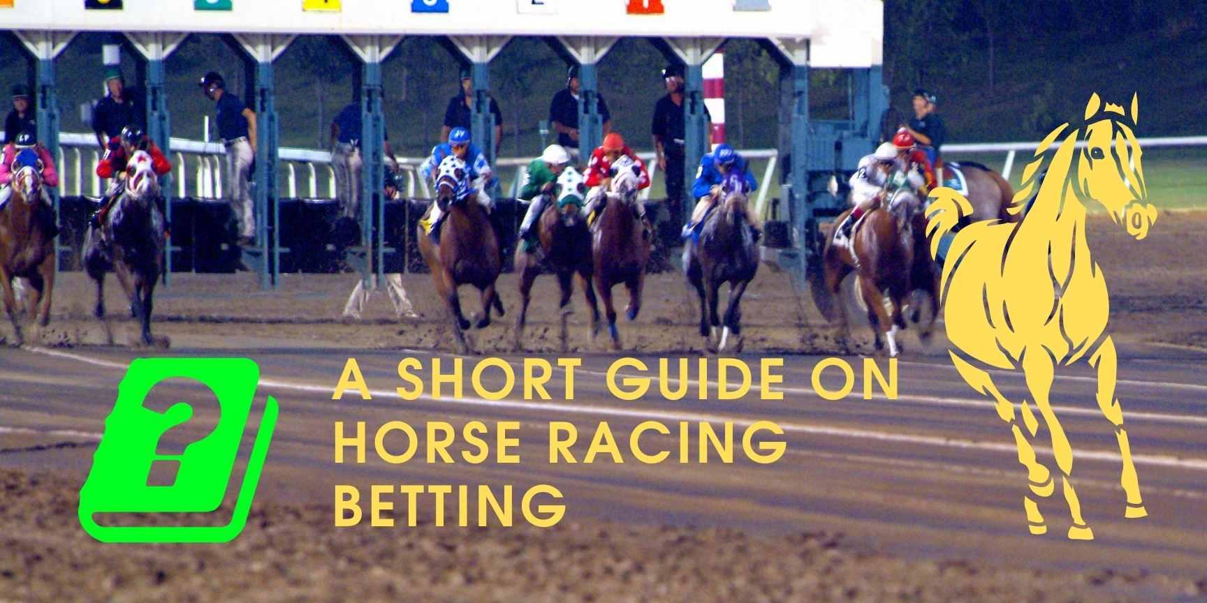 short guide